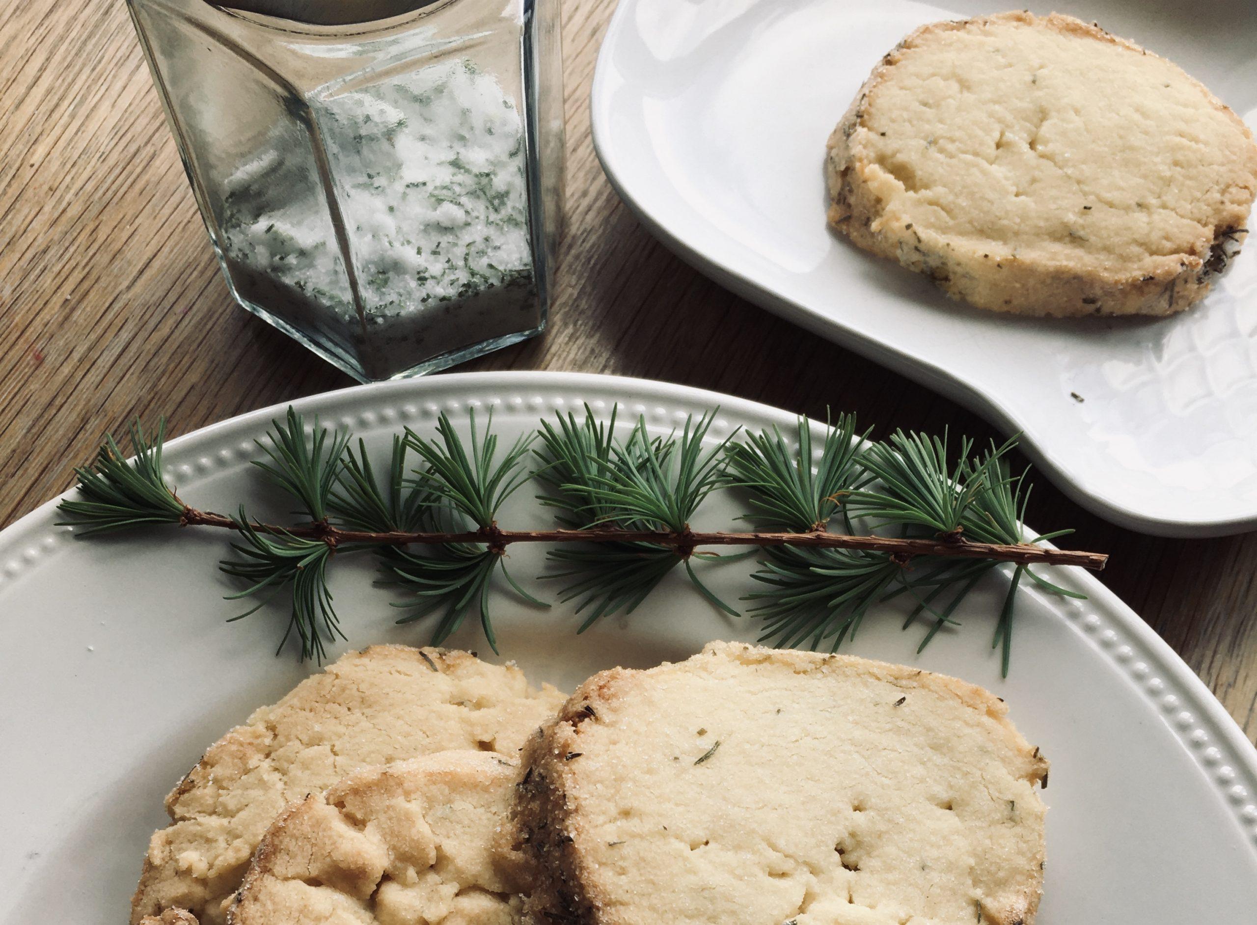 Wild Food Larch Shortbread Recipe